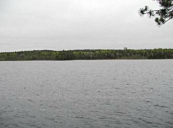 View from across the lake - Algonquin Park, Ontario